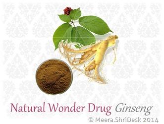 wonder-drug-ginseng
